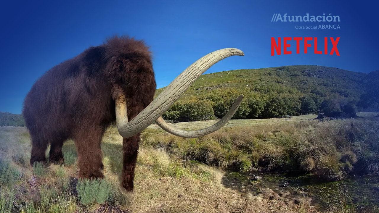 Mamut_VR_Afundación_Netflix_Maxina