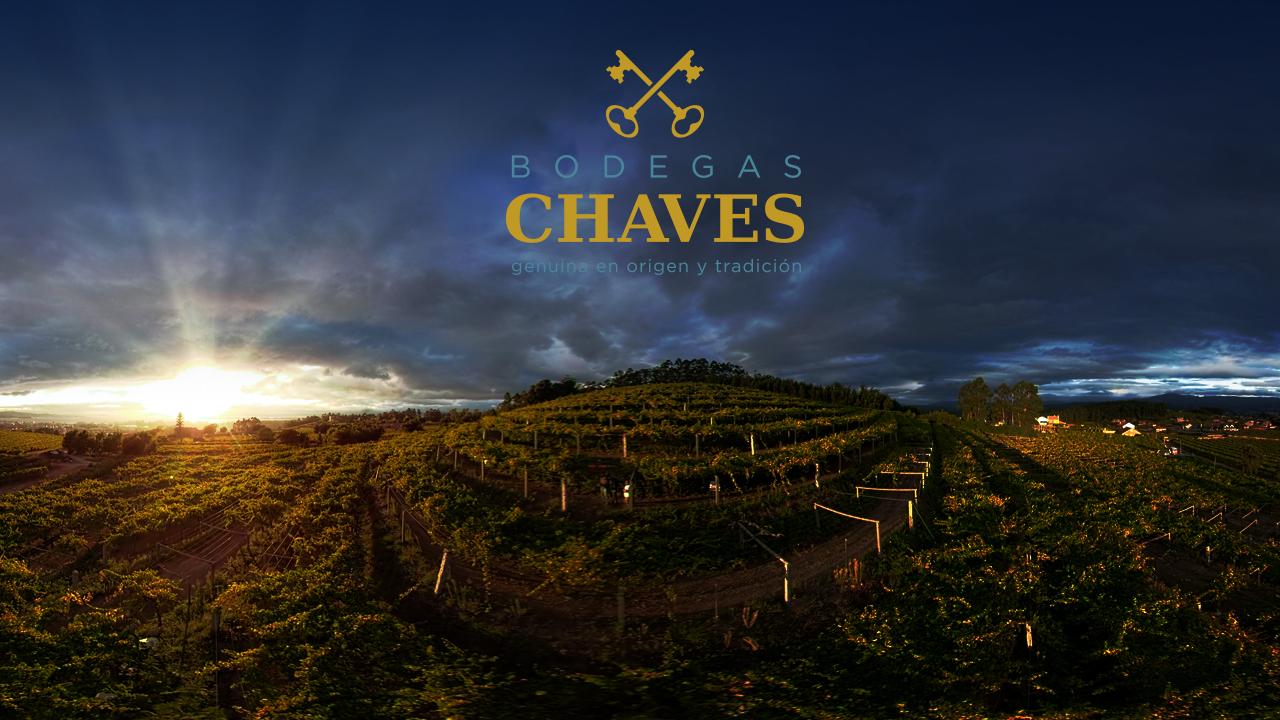 Bodegas-Chaves-VR-Maxina